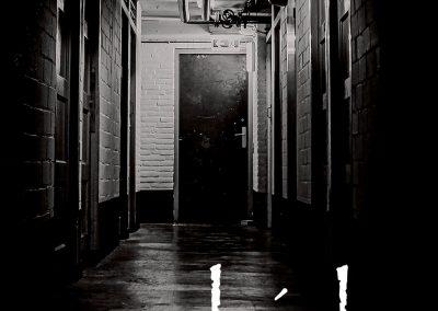 cover Morbide